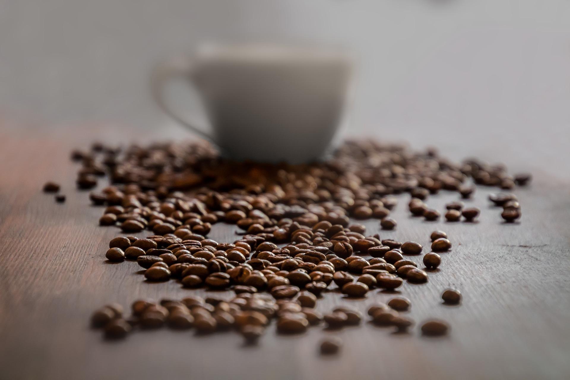 Katera je najboljša kava?